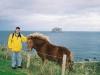 Marcelo e um cavalo