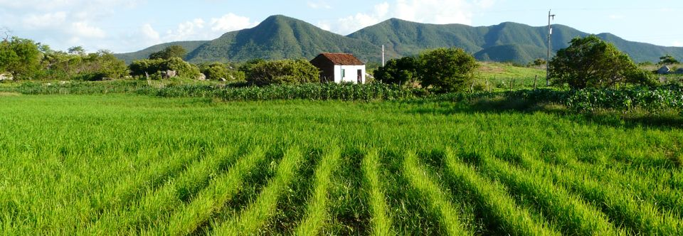 Vale do Piancó – Paraíba